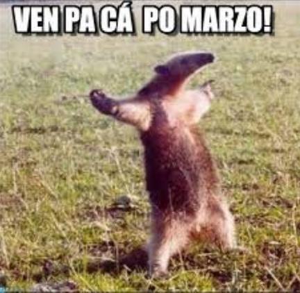 Lo que estabas esperando! Los memes que dejó el inicio de marzo —  RadioActiva 92.5